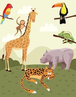 Wild animals group in the field scene