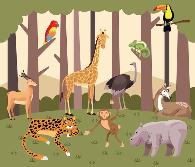 Группа диких животных в лесной сцене
