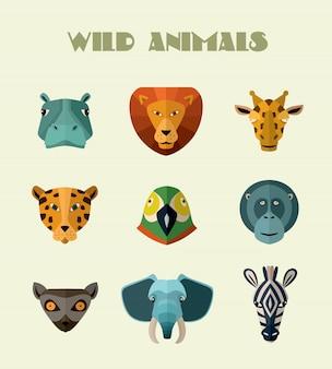 Wild animals heads set
