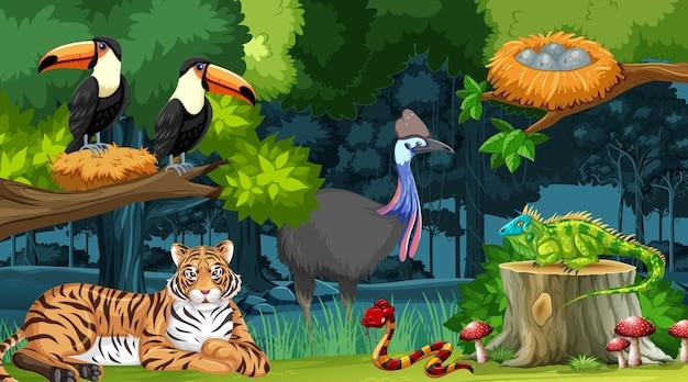 Дикие животные на фоне лесного пейзажа Premium векторы
