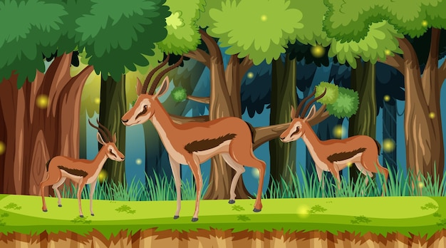 숲 풍경 배경에서 야생 동물