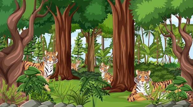 Дикие животные на фоне лесного пейзажа