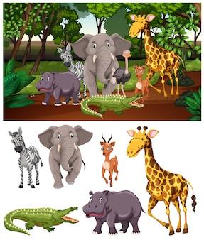 숲에서 야생 동물