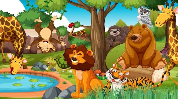 정글의 야생 동물
