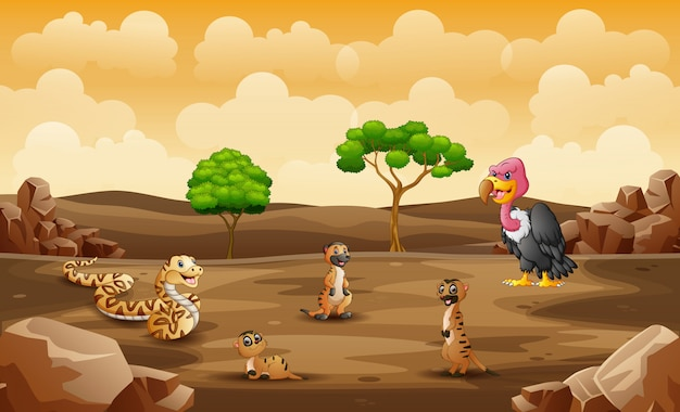 Wild animals living in a dry land
