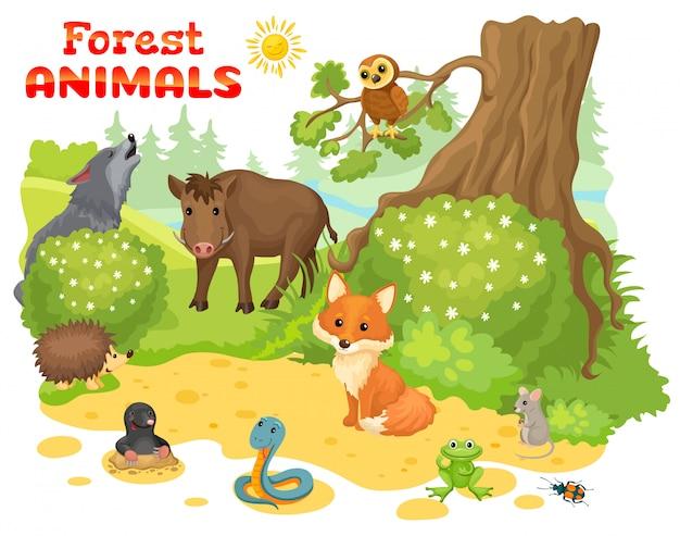 숲의 가장자리에 야생 동물.