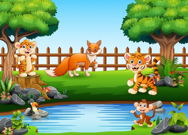 Wild animals playing on the edge of a beautiful small pond
