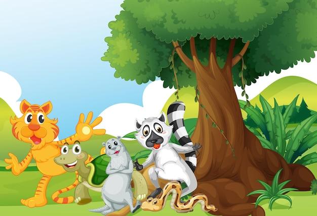 Дикие животные, стоящие под деревом