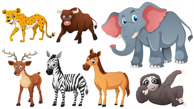 Animals vectors, +141,000 free files in  AI,  EPS format