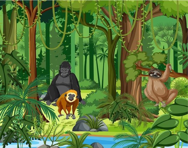 Wild animals with stream flowing through the forest scene