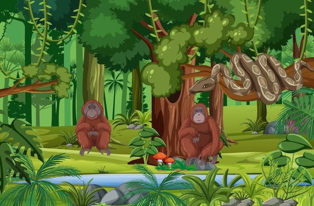 森のシーンを流れる小川の野生動物
