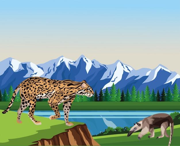 野営地でのアリクイやヒョウの野生動物