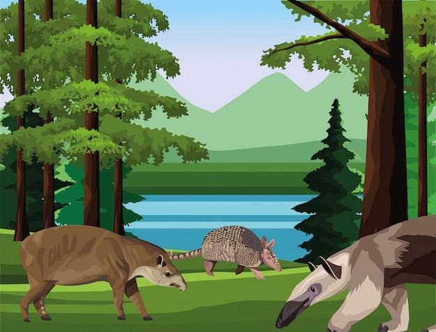 キャンプシーンでアルマジロとバクの動物と野生のアリクイ