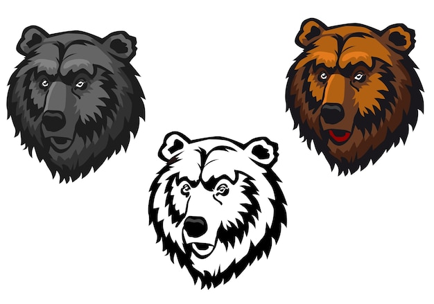 Wild bear as a mascot or tattoo isolated on white