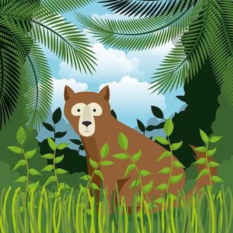 Wild bear grizzly in the jungle scene
