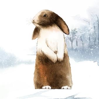 Дикий коричневый кролик в зимней стране чудес