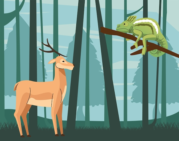 Wild chameleon and reindeer animals scene