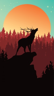 Wild deer in pine forest background for phone chase