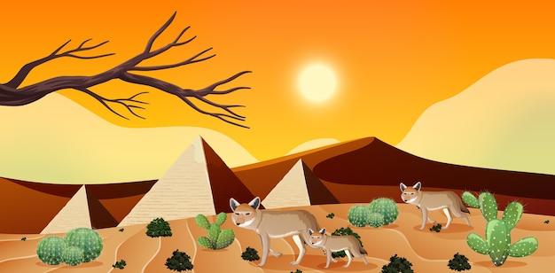 昼間の野生の砂漠の風景