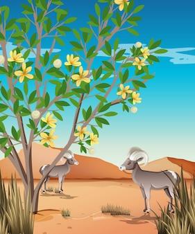 昼間のシーンで野生の砂漠の風景