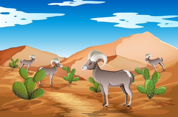 낮 장면에서 야생 사막 풍경