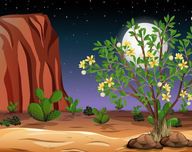 밤 장면에서 야생 사막 풍경