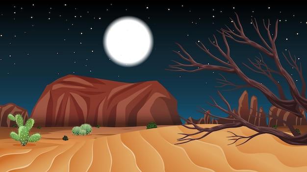 夜のシーンで野生の砂漠の風景