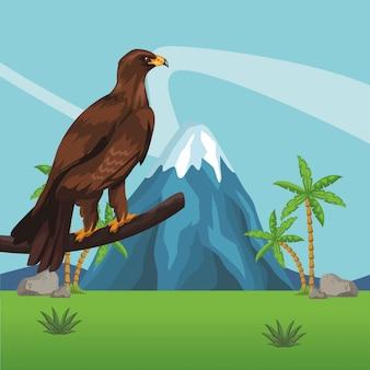 Wild eagle cartoon