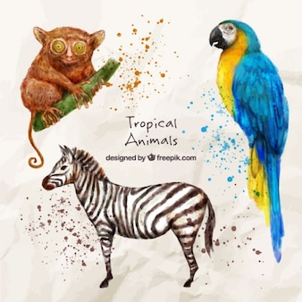 Wild and exotic animals in watercolor effect