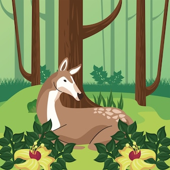 Wild fawn animal in the forest scene