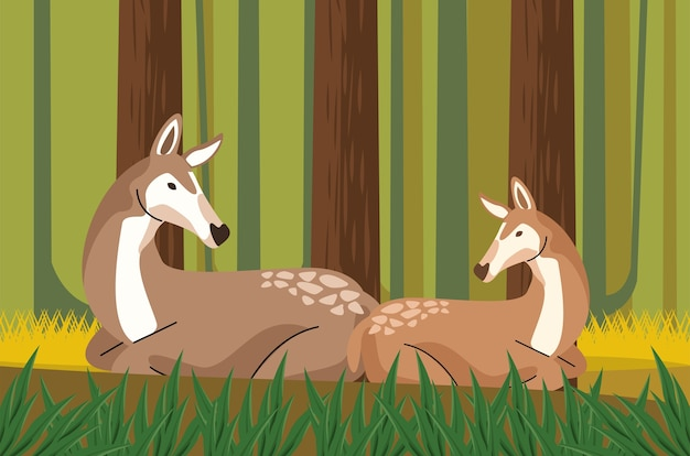 Wild fawns animals in the forest scene