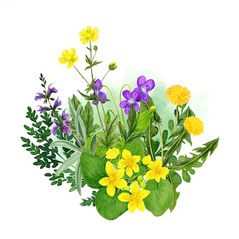 Wild field flowers bouquet, yellow and purple tints