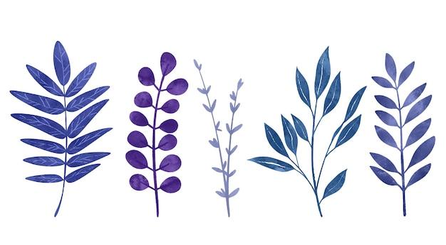 야생 꽃 요소 허브 꽃과 잎