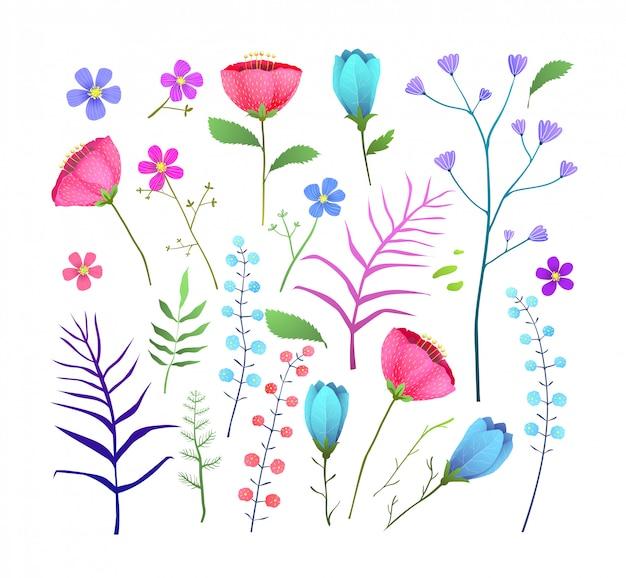 Wild flowers flat  illustration set