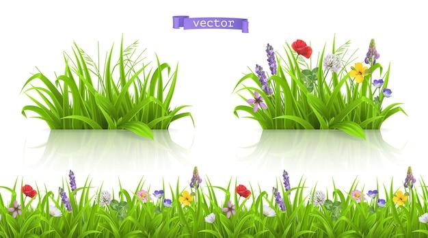 Wild flowers, forb alpine pastures 3d set