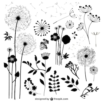 Wild flowers silhouettes