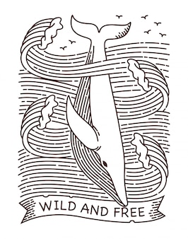 Wild and free whale line illustration