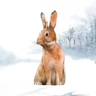 Дикий заяц в зимней стране чудес