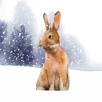 Wild hare in a winter wonderland