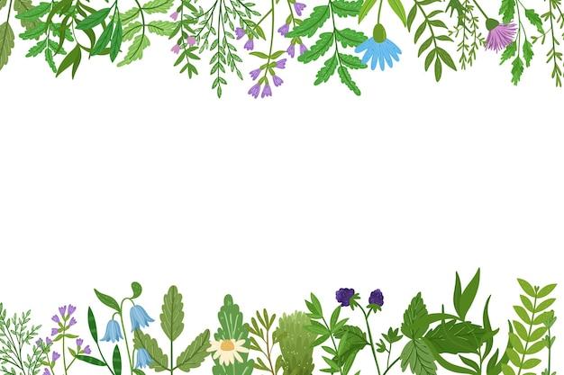 野生のハーブのバナー。漫画の葉、枝、花、小枝。手描きイラスト。