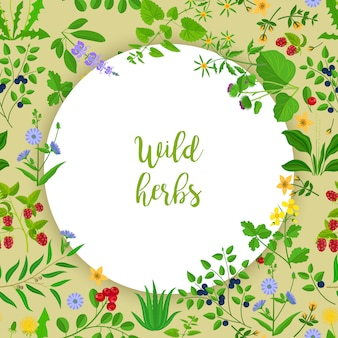 Wild herbs and berries circle frame background