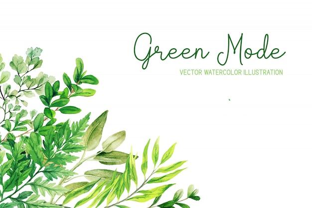 Дикие травы, листья и папоротники, зеленая угловая рамка