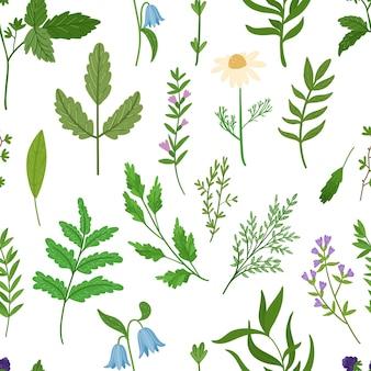 野生のハーブのシームレスなパターン。漫画の葉、枝、花、小枝。手描きイラスト。