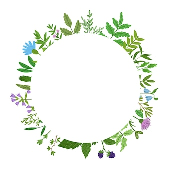 野生のハーブの花輪。漫画の葉、ブランチ、花、小枝が分離されました。手描きイラスト。