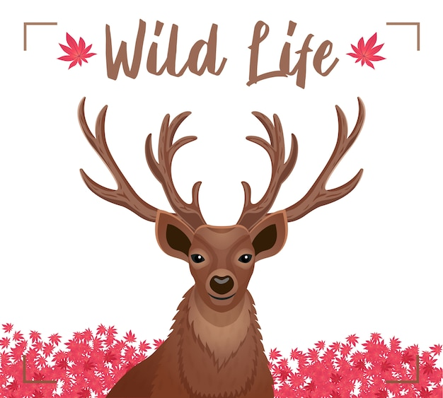 Wild life decorative poster with closeup dear head with horns antlers pink flowers  flat