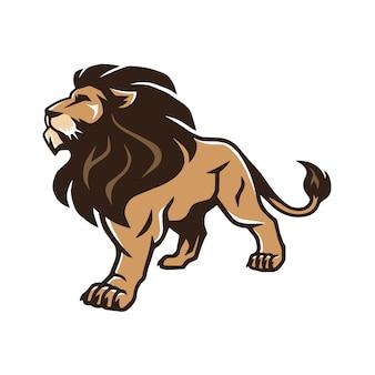 Wild lion standing