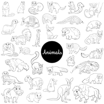Дикие млекопитающие животные персонажи набор цветная книга