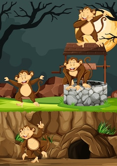 夜の背景に動物公園の漫画のスタイルで多くのポーズで野生の猿のグループ