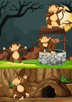 Le scimmie selvagge raggruppano in molte pose nello stile del fumetto del parco animale sul fondo di notte