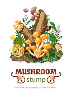 Wild mushroom species growing on stump